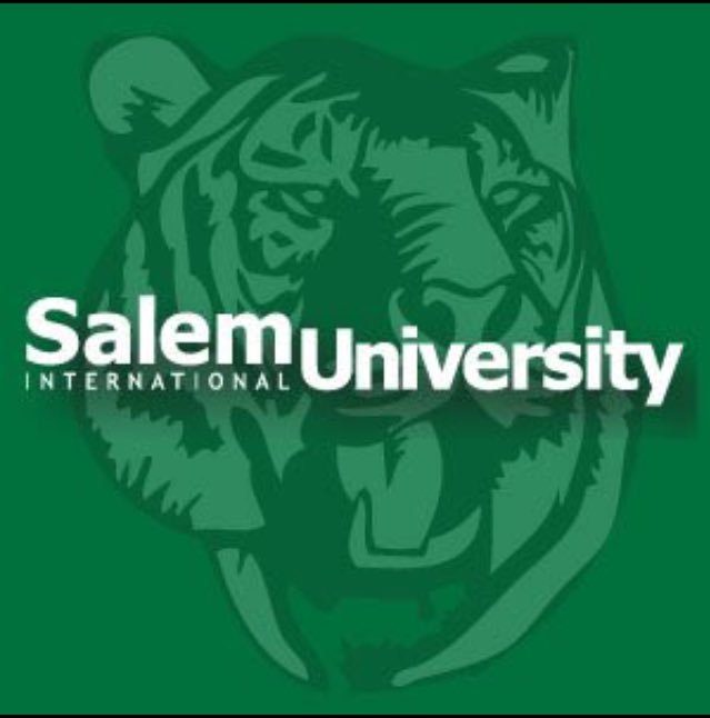 Salem University Bachelor of Science in Computer Science-Data Science